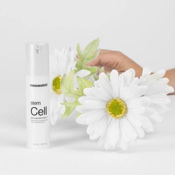 3-stem-cells